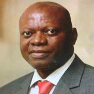 Chairman: Professor Abel Idowu Olayinka